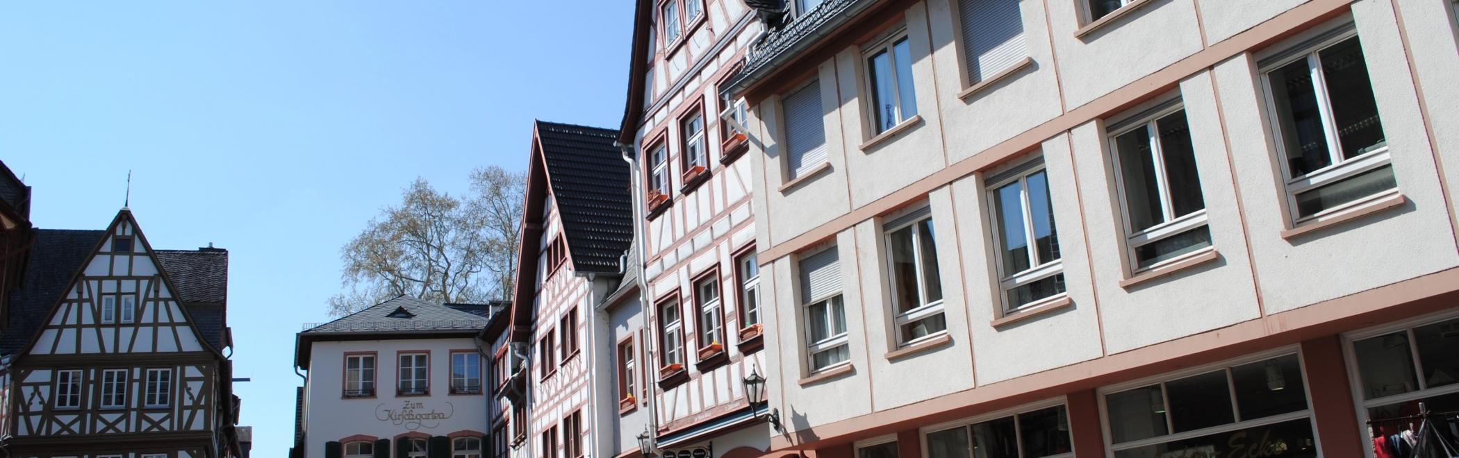 Rhein Dom Kirschgarten