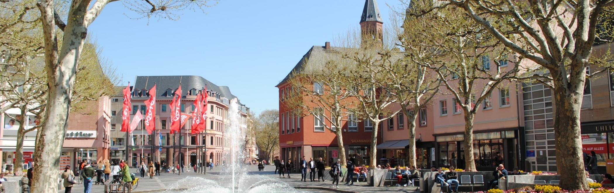Rhein Dom Brunnen Markt