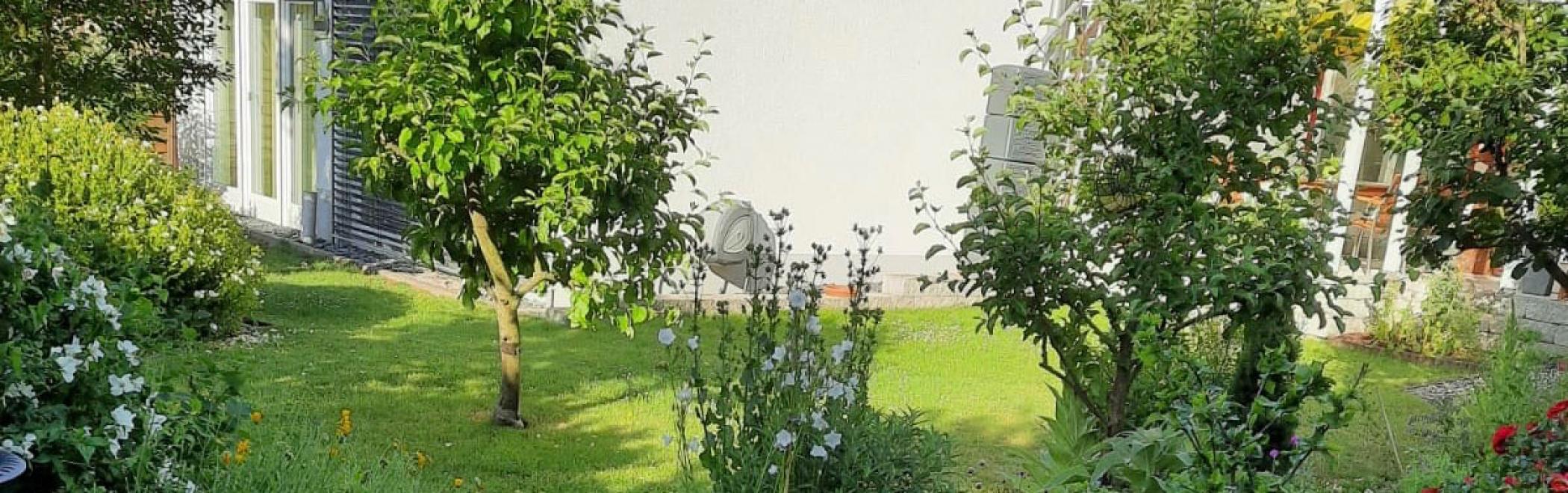 HI-Kirchstr.-Garten-Anbau